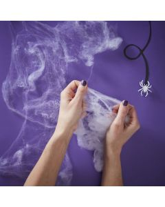 Creep It Real - Stretchable Fake Spider Web