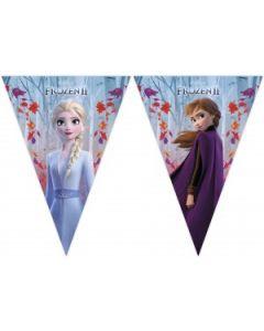 Frozen II Sparkle Triangle Flag Banner