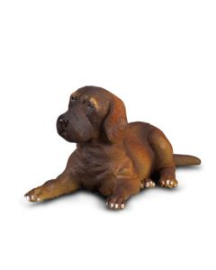 Great Dane Puppy - Small