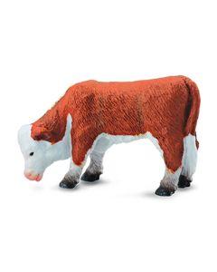 Hereford Calf Grazing - Farmlife - Small