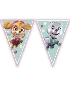 Paw Patrol Skye & Everest Triangle Flag Banner