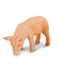 Piglet Eating - Farmlife - Small