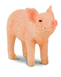 Piglet Smelling - Farmlife - Small