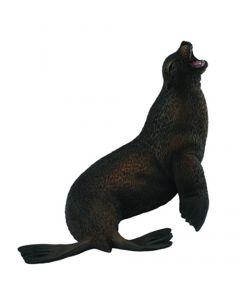 Sea Lion - Sea Life - Large