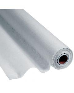 Silver Gossamer