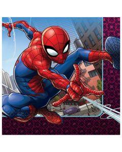 Spiderman Web Lunch Napkin