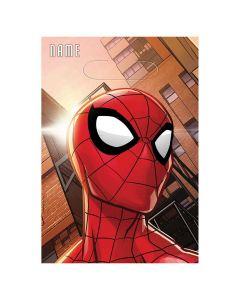 Spiderman Web Treat Sack
