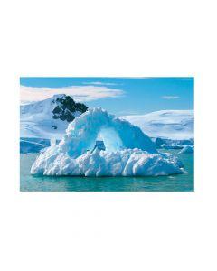 Wild Encounters VBS Arctic Backdrop