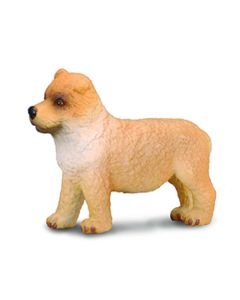 Chow Chow Puppy - Small