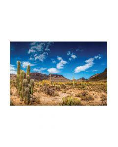 Desert Cactus Backdrop Banner