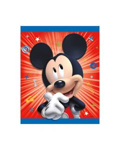 Disney's Mickey Mouse Party Loot Bags