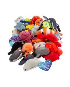 Mini Sea Life Stuffed Animals with Valentine's Day Card - 50 Pc.