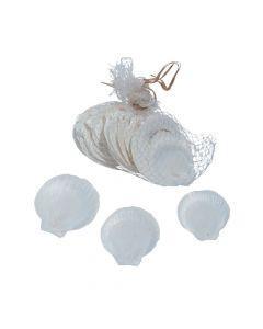 Moon Seashells