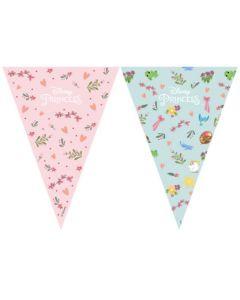 Princess Dare to Dream Triangle Flag Banner