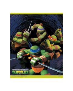 Teenage Mutant Ninja Turtles Goody Bags