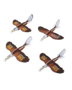 Wild Encounters VBS Eagle Gliders